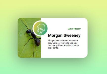 HTML网页素材设计代码与CSS绘制带阴影效果的名片卡片样式效果