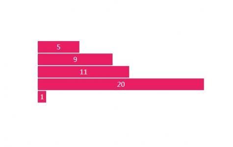 HTML网页统计图设计代码CSS动画样式表设计制作条形统计图图像效果