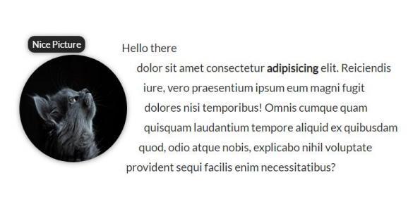 HTML标签网页代码与CSS布局设计图文排版样式效果鼠标滑过图片信息展示效果