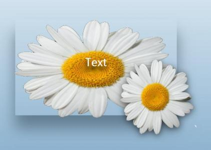 网站特效代码JavaScript和CSS3绘制带阴影卡片样式随鼠标移动而动画效果效果