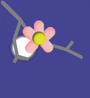 卡通动画特效设计与制作HTML标签样式CSS3绘制星空夜下花儿绽开动画场景