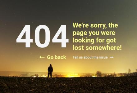 模板网站制作与下载HTML5和CSS选择器样式设计大气404网页静态页面