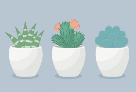图像设计网站HTML代码与CSS样式绘制SVG卡通盆栽植物动画特效演示样式效果