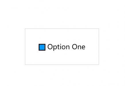 网页素材设计效果纯CSS3动画属性选择器代码美化checkbook复选框