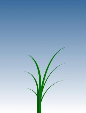 卡通动画设计网站HTML标签代码和CSS属性绘制青草随风摇摆场景