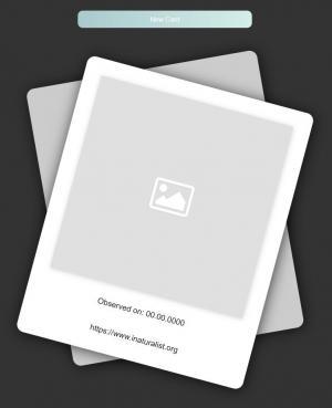 UI卡片样式设计效果react.js特效代码和CSS设计圆角卡片样式旋转展示