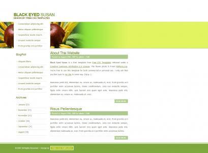 模板网站设计绿色简洁个人博客网站模板网页模板免费下载