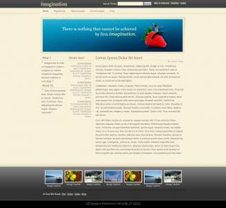 成都平面设计公司设计与制作图片网站模板展示型网站模板下载
