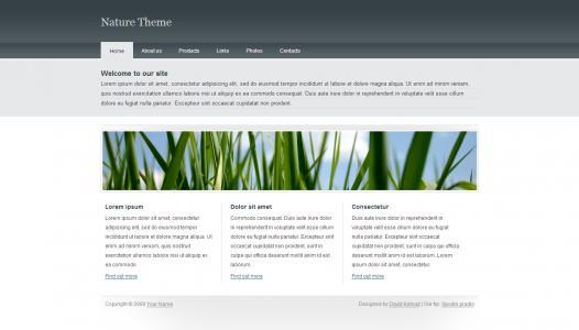 素材网设计与制作中小型公司产品展示型模板网站免费模板下载