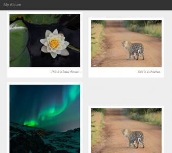 网页相册展示布局鼠标点击图像实现相册展示效果