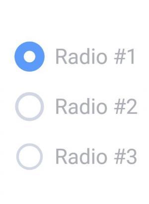 css3美化radio单选按钮点击切换动画效果html文本框样式代码