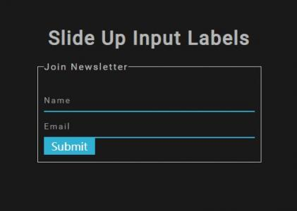 html网页form表单样式代码设计简单的向上滑动输入标签动画效果网页素材免费下载网站