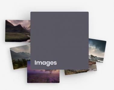 网页相册墙图片展示效果鼠标悬停卡片抖动展示图片动画效果html网页素材下载