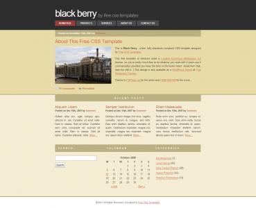 宽屏大气简约企业网站公司产品展示网站模板免费下载