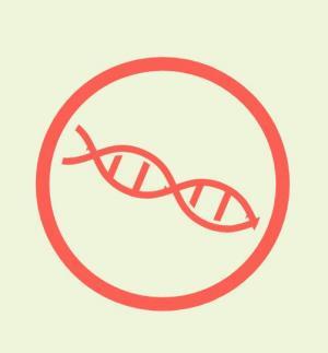 JavaScript网页特效代码与css3设计制作DNA螺旋状旋转动画效果网页动态图标素材设计网站